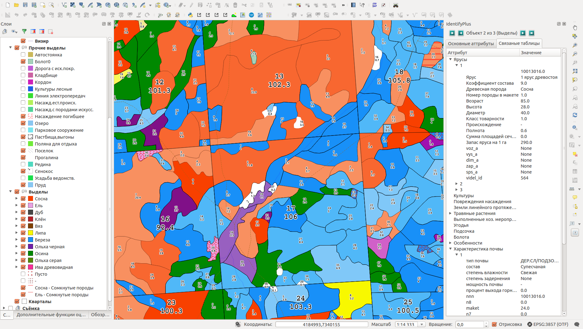 Forest inventory GIS and data migration from TopoL-Lesis to